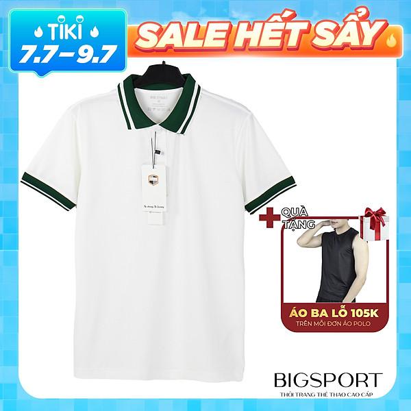 Áo Thun Nam Trơn Basic Polo Ngắn Tay Có Cổ Phối Sọc 100% Vải Cotton Thoáng Mát, Trẻ Trung Cao Cấp Big Sport