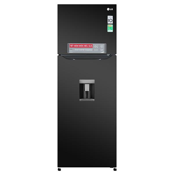 Tủ Lạnh Inverter LG GN-D315BL (315 lít)