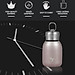 Water Bottle Stainless Steel Matte Vacuum Insulated Small Water Bottle for Kid Lid with Hook - Rose Gold - 300ML-3