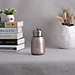 Water Bottle Stainless Steel Matte Vacuum Insulated Small Water Bottle for Kid Lid with Hook - Rose Gold - 300ML-0
