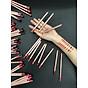 Chì Kẻ Viền Môi Vacosi Natural Studio Lipliner Pencil 4
