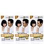 Combo 3 hộp Thuốc nhuộm tóc phủ bạc thảo dược Richenna Hàn Quốc màu đen tự nhiên 60g thumbnail