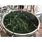Tinh dầu Tràm Organic hữu cơ 100ml Mộc Mây - tinh dầu thiên nhiên nguyên chất 100% - dùng xông tắm ngừa cảm lạnh, trị côn trùng cắn đốt cho Bé, Trẻ sơ sinh và Trẻ nhỏ An toàn cho làn da nhạy cảm của Bé 11