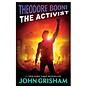 Theodore Boone The Activist thumbnail