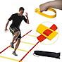 Thang dây thể thao luyện thể lực bóng đá RED Yellow, dây tập thể lực - DONGDONG 5