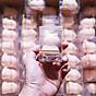 Mút tán kem nền trong hộp kính (Giao màu ngẫu nhiên) 4