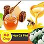 Mật Ong Nguyên Chất Hoa Cà Phê Golden Honey - Tốt Cho Sức Khỏe Tăng Hệ Miễn Dịch, Hỗ Trợ Chữa Dứt Điểm Ho, Giảm Nguy Cơ Bệnh Tim Mạch, Hỗ Trợ Giảm Mụn Trứng Cá, Sáng Đẹp Da Và Môi, Chế Biến Nhiều Thức Uống Và Món Ăn Ngon Bổ Dưỡng - Chai 500ml 2