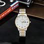 Đồng hồ nam PAGINI PA5588 dây thép kim dạ quang cao cấp chống nước 3ATM 6
