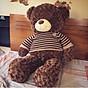 Gấu Bông Teddy Socola 90cm thumbnail