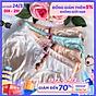 Combo 10 Quần Lót Thông Hơi Hoa Hồng Mềm Mại Nữ Tính Giao nhiều màu ngẫu nhiên Tặng kèm thun cột tóc thumbnail