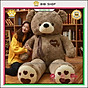 Gấu bông lớn, gấu bông siêu to khổng lồ thumbnail