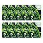 Combo 10 Gói Mặt Nạ Chiết Xuất Trà Xanh 3W Clinic Fresh Green Tea Mask Sheet (23ml x 10) thumbnail