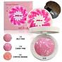Phấn Má Hồng Mira Crystal Flower Art Blusher Hàn Quốc 10g No.1 Jelly Pink tặng kèm móc khóa 3