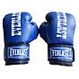 Găng Tay Boxing Bofit Everlast - 2 Kích Thước thumbnail