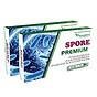 Hai hộp Spore Premium dành cho bé thumbnail