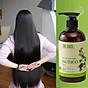 Dầu gội thảo dược HÀ THỦ Ô Chiết xuất từ 6 loại thảo dược - Cân Bằng Sắc Tố Melanin Khỏi lo bạc tóc rụng tóc Cocayhoala 300g thumbnail