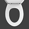 Nắp Bồn Cầu Sưởi Ấm Khử Mùi Xiaomi LY-TR005B