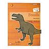 All Story - Fossils - Hóa Thạch - Trình Độ 2 (Tập 9)