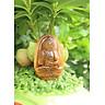 Mặt Dây chuyền Phật A Di Đà,  cho  tuổi Tuất, Đá Mắt hổ, Cỡ to BAN2