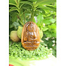 Mặt Dây chuyền Phật A Di Đà,  cho tuổi Hợi, Đá Mắt hổ, Cỡ to BAN2