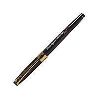 Bút Máy Điểm 10 FT-02 Plus - Thân Bút Màu Đen