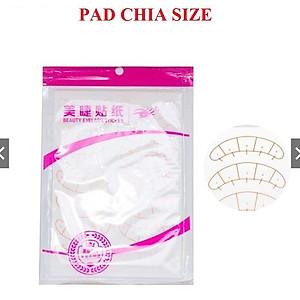 pad-chia-size-pad-chia-size-noi-mi-p97030548-0