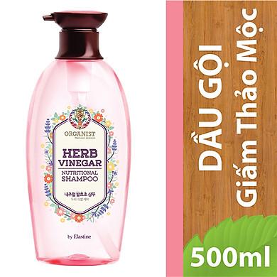 Dầu Gội Giấm Thảo Mộc Tự Nhiên Organist Natural Science Herb Vinegar Nutritional Shampoo 500ml