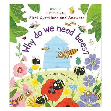 Usborne Why do we need bees?