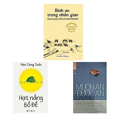 Combo 3 cuốn: Hạt Nắng Bồ Đề + Muốn an được an + Bình An Trong Nhân Gian