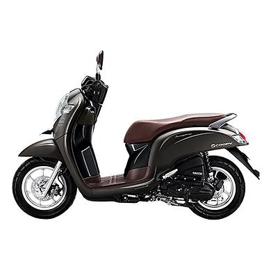 Xe Máy Nhập Khẩu Honda Scoopy 110  - Nâu xám