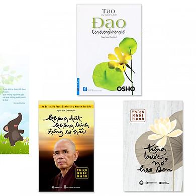 Combo 3 cuốn sách thiền hay: Không Diệt Không Sinh Đừng Sợ Hãi, Từng Bước Nở Hoa Sen, Đạo - Con Đường Không Lối (Tặng kèm bookmark danh ngôn hình voi)