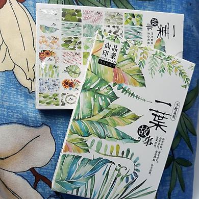 Hộp 36 Post Card Chủ Đề Hoa Lá (9.3 x 14.3cm)