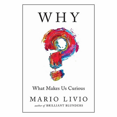 Why? What Makes Us Curious
