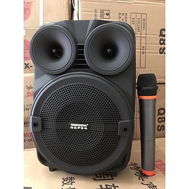 Loa kéo di động karaoke Temeisheng A8-10