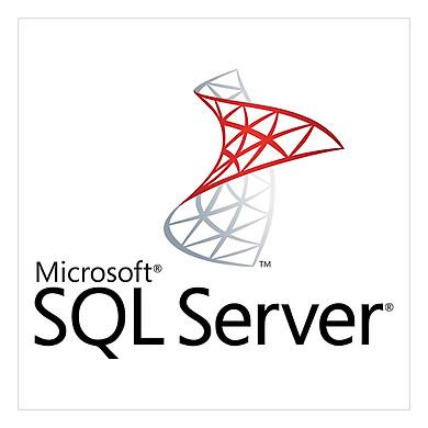 Phần mềm SQLCAL 2017 SNGL OLP NL UsrCAL - Hàng chính hãng