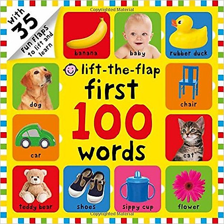 Lift-The-Flap: First 100 Words