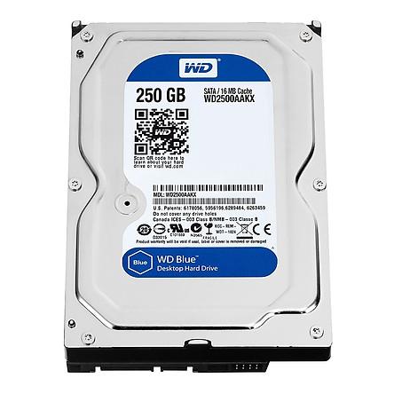 Ổ Cứng Trong PC WD 250GB (16MB) 7200rpm 3.5 Blue™ - Hàng Chính Hãng