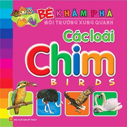 Bé Khám Phá Môi Trường Xung Quanh - Các Loài Chim