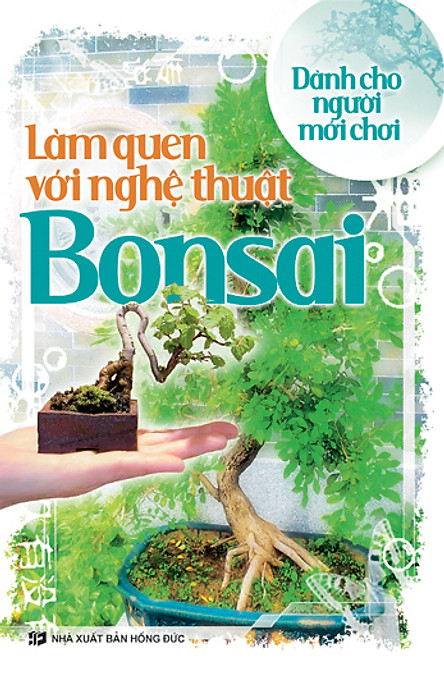 Làm Quen Với Nghệ Thuật Bonsai - Dành Cho Người Mới Chơi