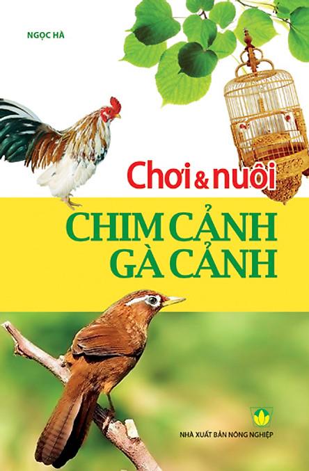 Chơi & Nuôi Chim Cảnh - Gà Cảnh