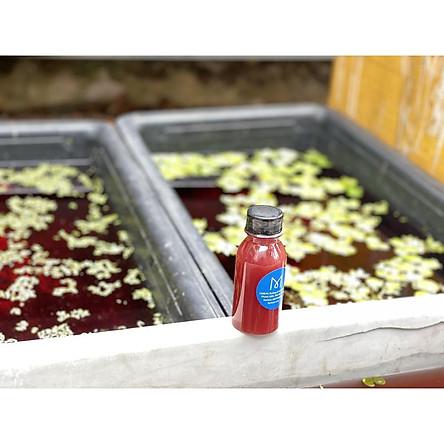 100ml Vi sinh PSB làm trong nước bể cá ( Vi khuẩn quang hợp, vi sinh tươi)