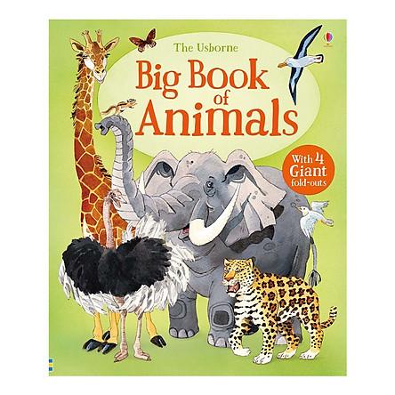 Usborne Big Book of Animals