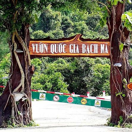 [Đà Nẵng] Tour Vườn Quốc Gia Bạch Mã 01 Ngày, Khởi Hành Hàng Ngày