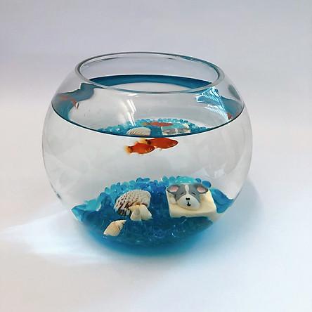 Combo bể cá mini thủy tinh tròn để bàn full phụ kiện