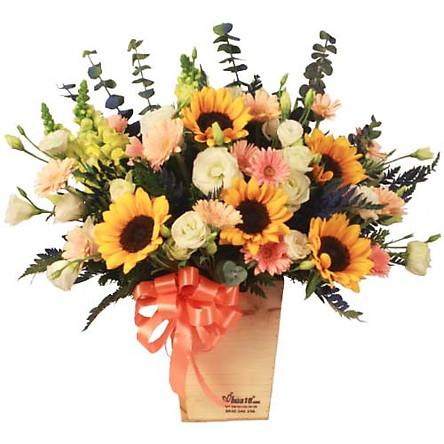 Hộp hoa tươi - COSY 4166