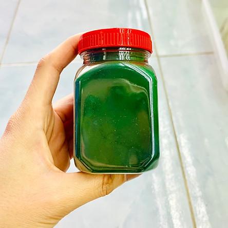 Tảo Bột - Thức ăn cho Artemia và cá con