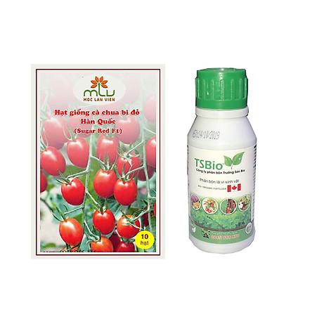 Combo Hạt giống cà chua bi đỏ Hàn Quốc – Sugar Red F1( gói 10 hạt) + Chai Phân bón Trường Sơn Bio Chai 100ml