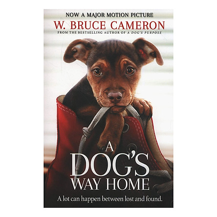 A Dog's Way Home: The Heartwarming Story of the Special Bond Between Man and Dog (Paperback)