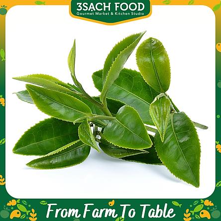 Đọt trà xanh - gói 300gr - Lá trà tươi xanh, tốt cho sức khỏe