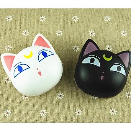 Khay đựng lens mèo trắng đen